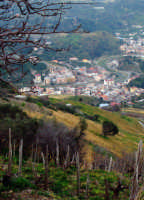 Vista  del villaggio S Stefano Briga da un vigneto sulle colline soprastanti (feb. 2006)  - Santo stefano briga (9592 clic)