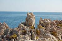 il promontorio di Sant'Elia fra rocce,mare e macchia mediterranea  - Sant'elia (5447 clic)