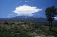 ETNA  - Etna (2058 clic)