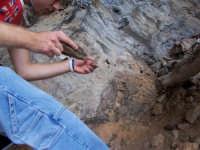 alla ricerca di pietre dalle forme antiche    - Bonagia (2258 clic)