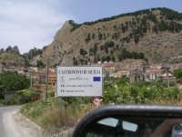 Veduta di Castronovo.  - Castronovo di sicilia (4355 clic)