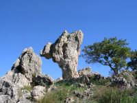 Bellissima roccia scolpita nel tempo dagli eventi naturali nei pressi  di S.Cristina Gela.  - Santa cristina gela (3239 clic)