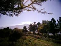 Meravigliosa vista dell'Etna vista dall'interno del parco dei Nebrodi.  - Randazzo (2337 clic)
