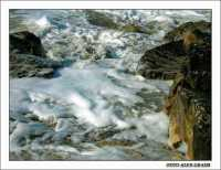 Marine foam  - Agrigento (2716 clic)