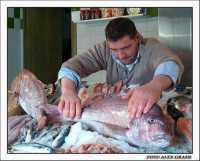 Pesce fresco ... una carica di omega 3!  - Agrigento (2403 clic)