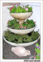 Il mio ... rifugio estivo: la fontana del verde  - Agrigento (3158 clic)