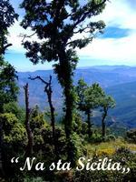Piano Pomo Nel cuore del Parco Ragionale delle Madonie, Piano Pomo, località nei pressi di Castelbuo