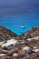 tabaccara  - Lampedusa (3617 clic)