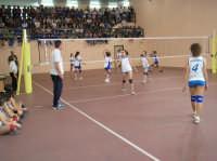 Volley Femminile - Finali Provinciali 2006 cat. under 13.  - Gibellina (2463 clic)