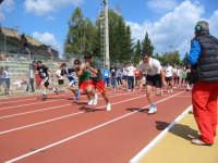 Alcamo - fase provinciale campionati studenteschi - 22 aprile 2008  - Alcamo (1602 clic)