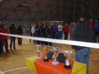 Torneo di Capodanno - 4 gennaio 2009 -  Triangolare volley femminile - squadre partecipanti : Tricolore team volley Marsala - Centro Carne Castellammare ed Intermedia Salemi.  - Salemi (4241 clic)