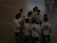 23 aprile 2008 - Finali Regionali volley maschile under 16 - Volley Valley Catania -   - Gibellina (2552 clic)