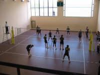 23 aprile 2008 - Finali Regionali volley maschile under 16 - Gibellina (TP) -vs- Sciacca (AG)  - Gibellina (2668 clic)