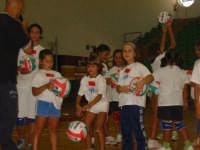 Federazione Italiana Pallavolo 5-9 settembre 2007 corso nazionale formatori provinciali del settore scuola e minivolley.  - Castellammare del golfo (1359 clic)