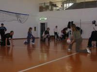 2 aprile 2007 - corso aggiornamento fipav - A scuola di minivolley - 2° circolo didattico A. Castiglione.  - Mazara del vallo (2081 clic)