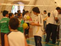 Alcamo-palestra comunale via Verga - festa territoriale 1,2,3...minivolley *maggio 2007*  - Alcamo (1358 clic)