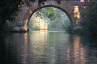 Il fiume Ciane -Siracusa, 1.10.2006  - Siracusa (4760 clic)