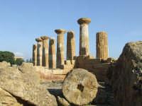 tempio di Ercole   - Agrigento (4920 clic)