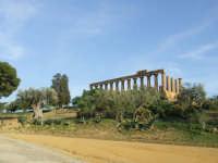 tempio di giunone   - Agrigento (2129 clic)