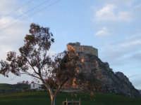 il castello di mussomeli  - Mussomeli (2957 clic)