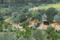 Giardino di Kolimbetra   - Agrigento (3620 clic)