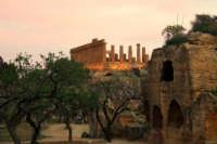 valle dei templi   - Agrigento (2257 clic)