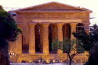 Tempio della concordia   - Agrigento (2231 clic)