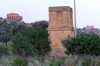 Valle dei Templi  - Agrigento (1876 clic)
