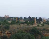 Valle dei Templi  - Agrigento (2159 clic)