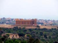 tempio della concordia   - Agrigento (2000 clic)