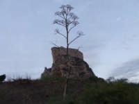 Il Castello di Mussomeli  - Mussomeli (2832 clic)