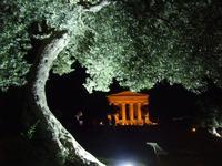 Valle dei Templi,Tempio della concordia   - Agrigento (4279 clic)