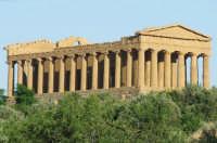 tempio della concordia  - Agrigento (1910 clic)