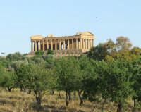 tempio della concordia  - Agrigento (2114 clic)