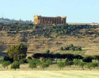 tempio della concordia  - Agrigento (1965 clic)