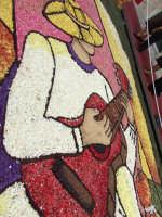 Infiorata 2008:Fantasia di colori  - Noto (1874 clic)