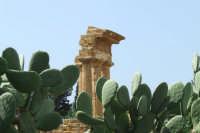 tempio di Dioscuri   - Agrigento (2248 clic)