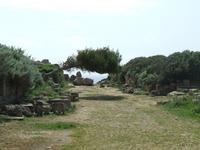 Acropoli di Selinunte   - Castelvetrano (4353 clic)