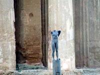 Valle dei Templi e statue di Mitoraj   - Agrigento (2249 clic)