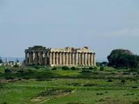 Tempio di Selinunte   - Castelvetrano (4346 clic)