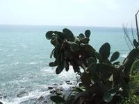 La spiaggia   - Marinella di selinunte (5084 clic)