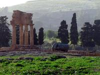 Valle dei Templi e Statue di Mitoraj   - Agrigento (3091 clic)