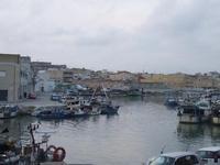 Il porto   - Mazara del vallo (1670 clic)