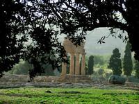 Valle dei Templi e Statue di Mitoraj   - Agrigento (3061 clic)