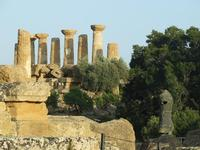 Valle dei Templi e Statue di Mitoraj   - Agrigento (3024 clic)