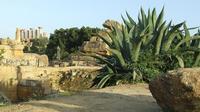 Valle dei Templi e Statue di Mitoraj   - Agrigento (3010 clic)