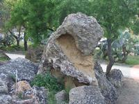 Valle dei Templi    - Agrigento (3982 clic)