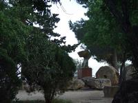 Valle dei Templi e Statue di Mitoraj   - Agrigento (2935 clic)