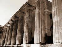 Colonnato Tempio della concordia   - Agrigento (2299 clic)