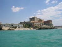 Castello di Falconara  - Butera (4920 clic)